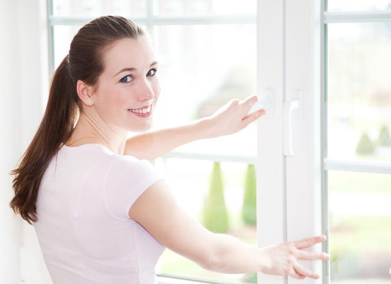 huisstofmijt-voorkomen