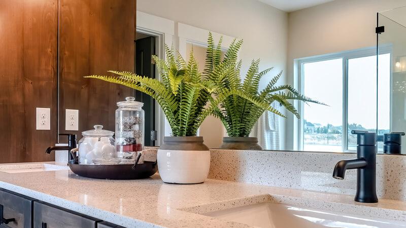 Welke planten zijn geschikt voor in de badkamer