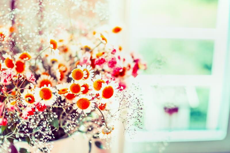 bloemen langer goed houden